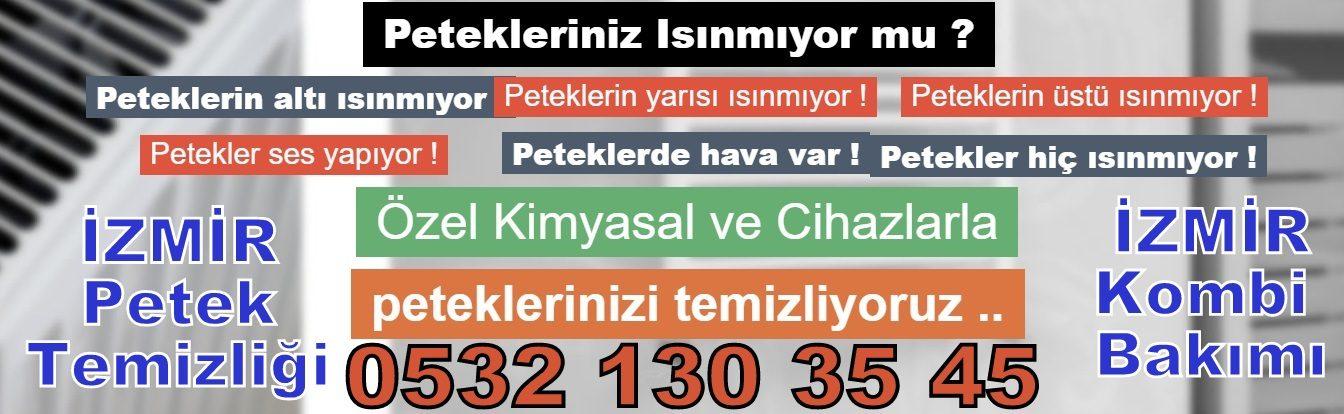 Petek Temizleme, İzmir Petek temizliği